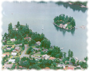 Aerial view of Cole Island